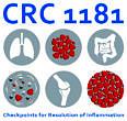 CRC 1181